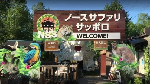 世界最危险的动物园进园要签生死状 可以和猛兽亲密接触