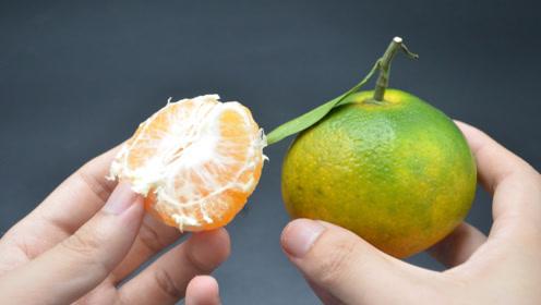 喜欢吃橘子的抓紧看看,等吃亏就来不及了