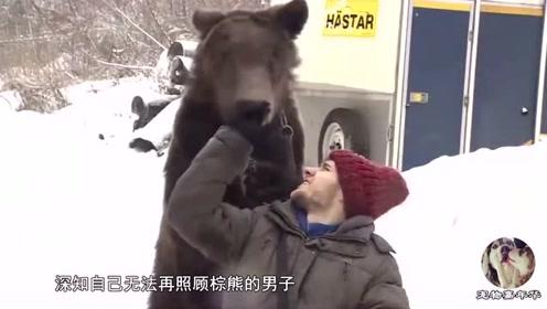 男子从小养了一头熊,不幸男子双腿意外瘫痪,熊的举动让人感动