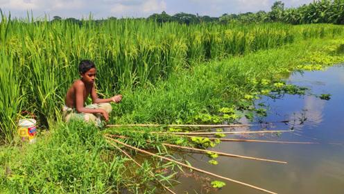农村男孩野外钓鱼,五根鱼竿一个水桶,看看他钓了多少鱼