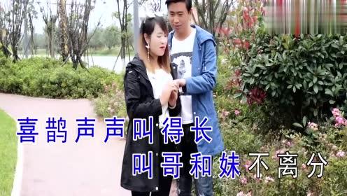 云南山歌:《喜鹊飞来情合意》演唱:王妃,阿科,小哥哥好帅!