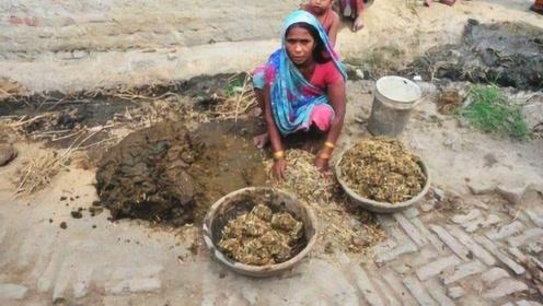 印度特产牛粪饼,价格昂贵,牛粪饼越多证明家里越有钱!