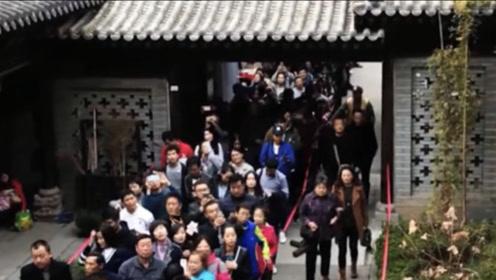 1400年前李世民栽下一棵树,如今万人排队,只为欣赏一眼