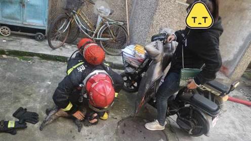 """真·宠狗!家中着火女子哭喊""""先救狗"""",多次想冲进火场被拦"""