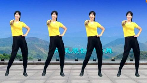 阿采广场健身操《小花DJ》一看就会,排毒排汗更瘦更健康