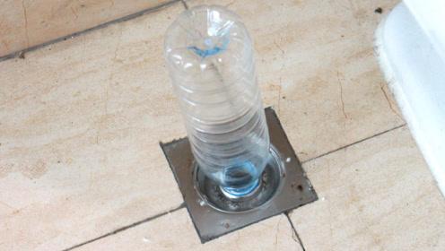 地漏下水道里插一个塑料瓶, 试过的人都夸好,真是太厉害了