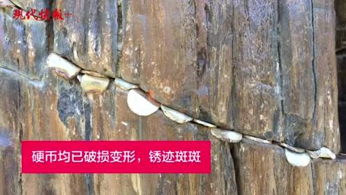 南京方山一石头缝里被塞满祈福硬币,景区:这并不是古化石