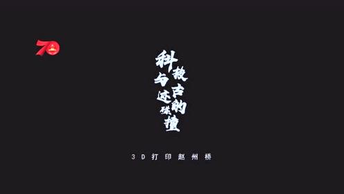 赵州桥官方解说