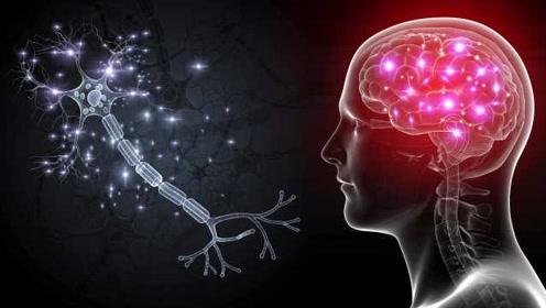 哈佛医学院最新研究:大脑太兴奋可能折寿,瑜伽或会延长寿命
