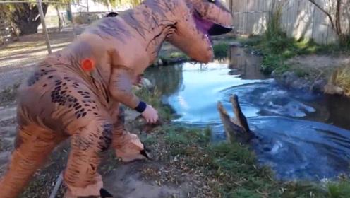 男子假扮霸王龙,赤手空拳恶搞池中凶猛的大鳄鱼,胆真大!