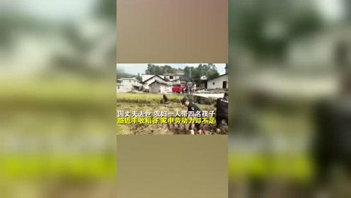 20余名特警帮农妇打谷子苦战10时,这场面全村人都看呆了!