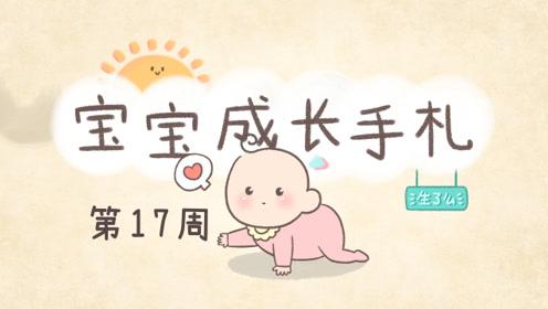 宝宝17周,体重及头围增长放慢,认知能力及语言能力也加强了