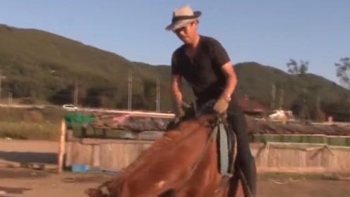 被人骑就装死的马,关键还装的特别像,隔着屏幕都被逗笑了