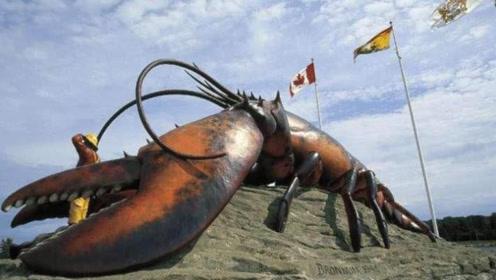 世界上最大的龙虾,身长2米比人还高,厨师根本无从下手!