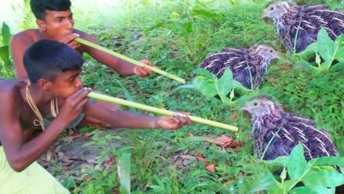 男孩巧用植物做暗器,镜头记录捕抓猎物过程,看完不敢信!