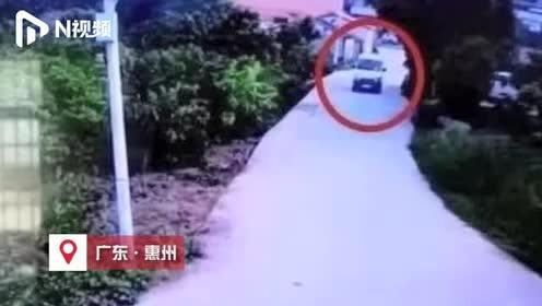 警方将GPS预警器偷偷装偷狗车上,人赃并获解救4只中华田园犬