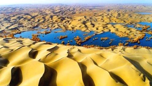 沙漠突降暴雨,两天下了9年的雨量,竟然还出现了湖泊!