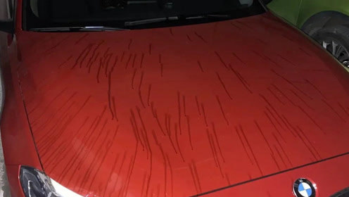仅停20分钟!广西桂林一宝马豪车深夜惨遭毒手,车身划痕并被泼油