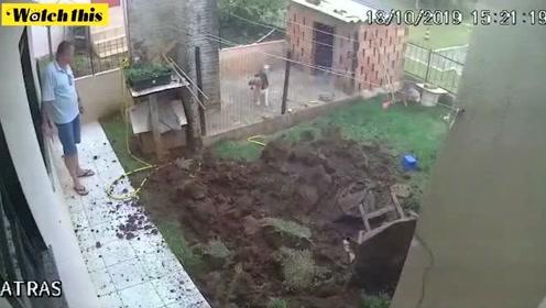 巴西男子出奇招打算把蚂蚁窝一锅端 谁料最后把自家后院也端了