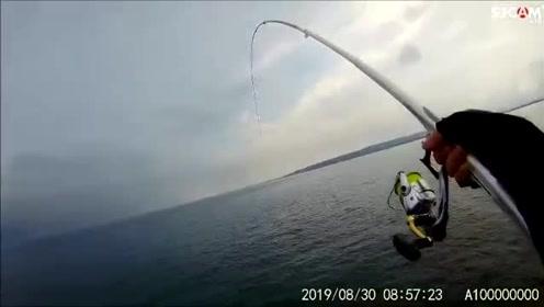 矶钓,一直在连竿,堤岸边聚满了鱼