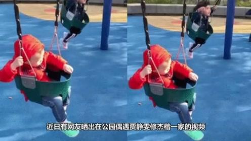 网友偶遇贾静雯修杰楷一家逛公园 波妞玩荡秋千超可爱