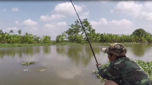 小伙河边选好位置撒下钓竿,接着收获不断都舍不得离开了