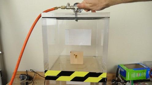 真空中灼烧木头,它会燃烧还是融化?实验结果其实很简单