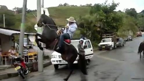 史上脾气最大的黑马,为了不让人骑,竟然想出这种损招,太机智了