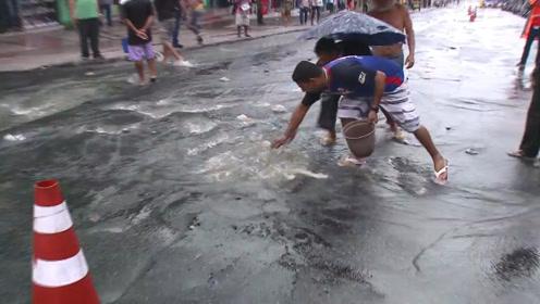 暴雨后,下水道竟开始往外冒鱼,路人提着桶收获满满!