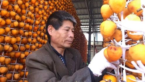 富平大哥做柿饼:一年加工三万多斤柿子,听听能挣多钱