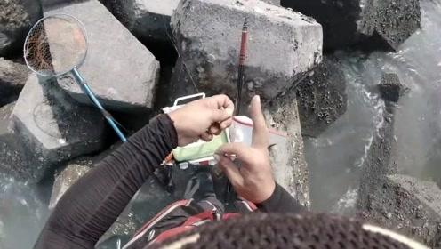 前打活鱼放流,第一次用大物竿玩,虱目鱼作饵,能不能钓到大鱼呢