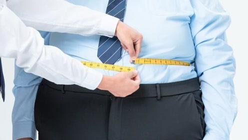胆囊结石的最大帮凶是肥胖,8成以上患者被它所困,专家讲明原理