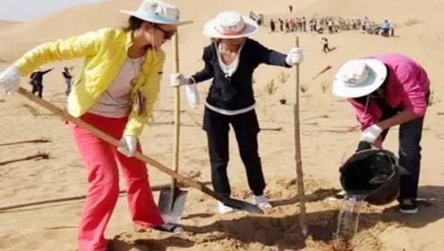 世界又一沙漠将被中国消灭!面积四万多平方公里,堪称中国奇迹
