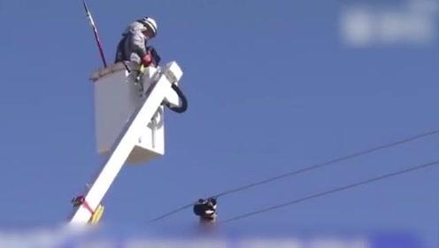 尴尬!消防员营救被困在电线杆上的猫咪 不料猫咪顺着电线杆自己爬了下去