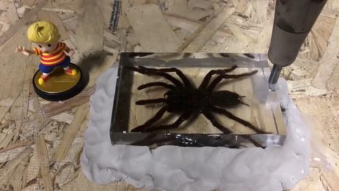 最柔的水加压后变成锋利的刀,小伙用高压水刀切割蜘蛛,镜头记录全过程