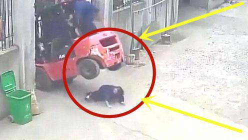叉车头失控重脚轻,女子好心上前帮忙,不料头颅被砸扁!