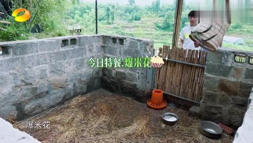 王迅和彭彭独自吃爆米花,众人纷纷品尝,都说非常的好吃!