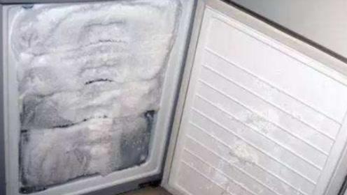 今天才知道,冰箱里面有个小机关,每月动一动,冰箱不再结冰