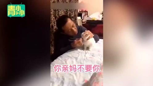 爸妈一开始不让养猫狗系列,最后变成,大型真香现场!