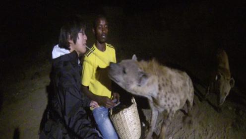 逛非洲屋脊,和鬣狗抢食,感受不一样的埃塞俄比亚