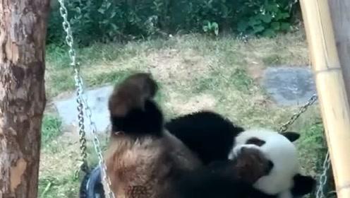 这小日子悠闲得,让人嫉妒的下辈子也变成熊猫!安逸的不得了!