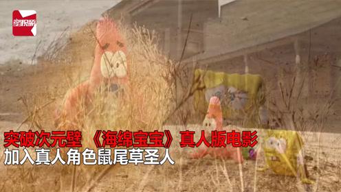 突破次元壁 《海绵宝宝》拍真人版电影  加入真人角色鼠尾草圣人