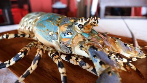 """""""彩虹龙虾""""该如何吃?这虾太贵,做不好就浪费了!"""