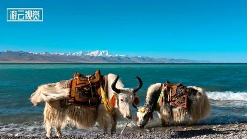 去西藏游玩几月去最好?每个月都有不一样的景点!完全取决与你的喜好