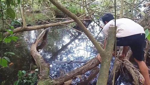 荒废野塘边钓鱼,结果使劲一收杆,这才发现有意外的大收获!