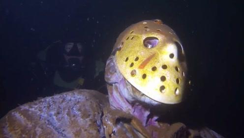 男子潜水发现,一个戴面具的男人,正盯着自己看,被吓得魂飞魄散