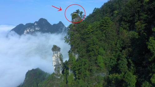 贵州大山一尖峰上的房子,这么高的地方,古人是怎么建上去是个谜