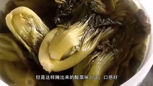 关于腌酸菜,妈妈反复叮咛:不注意这几点,容易烂掉还会中毒