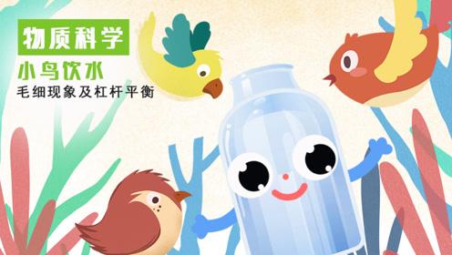 科学小实验丨能自己喝水的饮水鸟
