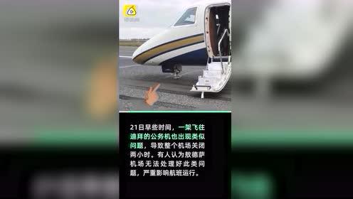 波音737降落遇前起落架故障,机头向下硬着陆